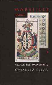 Towards the Art of Reading by Camelia Elias book cover