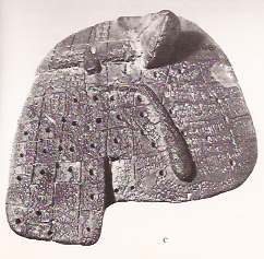 Clay model of liver from Mesopotamia